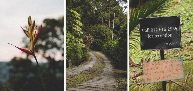 Dusun-3-crop